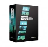 WAVES Sound Grid Essentials